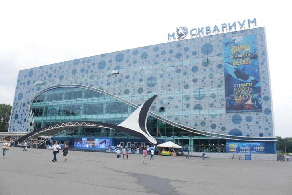 Хроника выживания в Москвариуме