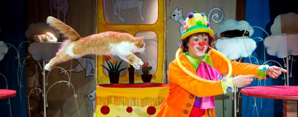 «Кошки в городе» - реакция зрителей оказалась однозначной (отзывы)